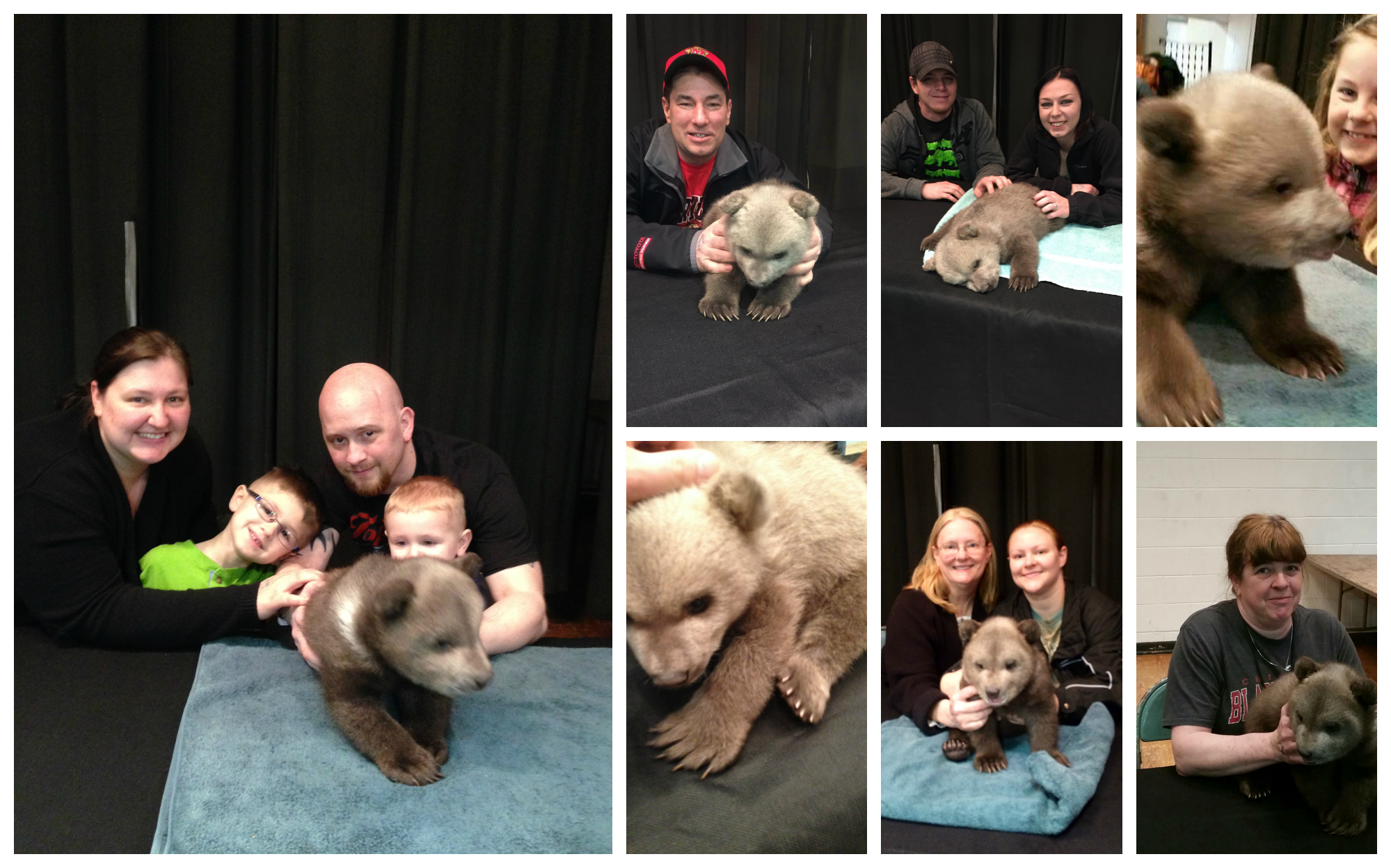 Grizzly Bear Cub Pictures!!